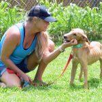 Kaua'i Humane Society Uses Social Media to Connect People and Pets