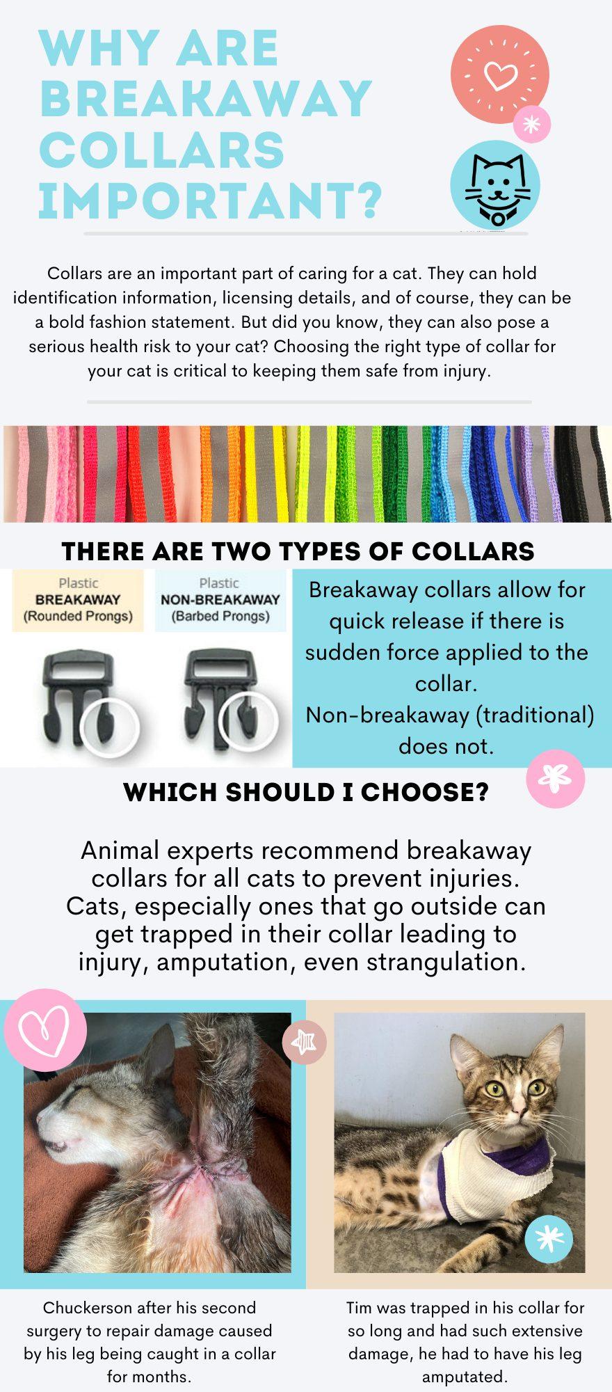 Breakaway cat collar infographic
